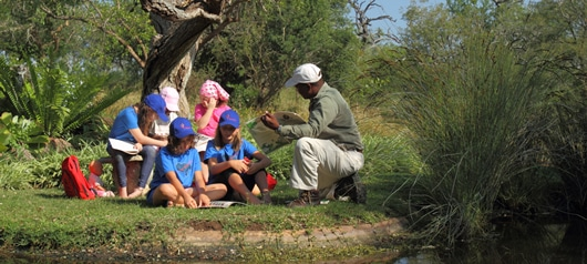 kids learning on safari