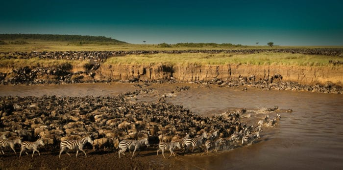 Great-Migration-Serengeti-National-Park