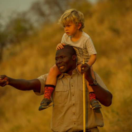 Visit africa with your family